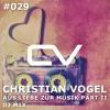Schaltwerk Podcast Episode #029: Christian Vogel - Aus Liebe Zur Musik Part II DJ Mix