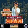 BRANDON STAR - SHAKE (soca 2017)