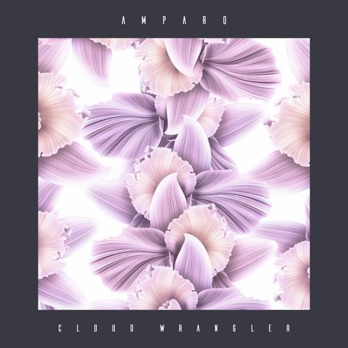 Amparo - Cloud Wrangler