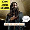 BEST OF LUCKY DUBE-SERIOUS REGGAE BUSINESS