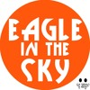 Bromate - Eagle In The Sky (Radio Mix)