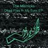 The Merricks - Dead Flies In My Eyes EP - 01 - You make me sick 3
