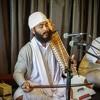 02 Raag Asa - Merai Mann Prem Lago Har Theer - Bhai Resham Singh Ji