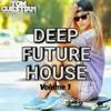 Deep Future House Mix Vol.1