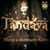 Shanti People - Tandava (Johnson Edit)
