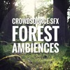 CrowdsourceSFX Forest Ambiences demo