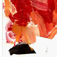 Pigarette - Poinsettia
