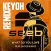 What Do You Love - Seeb ft. Jacob Banks (KeYoH Remix)