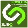 Sampler: Fowleja- What You Can't Have (Original Mix)