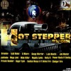 Mega Jani - Mi Gud Syd (Hot Stepper Riddim).MP3