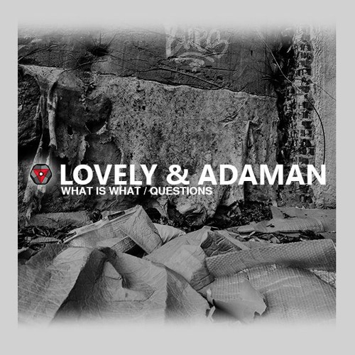 LOVELY & ADAMAN - WHAT IS WHAT / QUESTIONS (SYNB003)