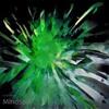 MindSpill - FULL ALBUM
