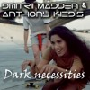 Dark Necessities Red Hot Chili Peppers Deep House Cover Mp3