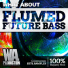 Download Flumed Future Bass [8 Construction Kits, 80+ Drum Samples & Loops, Serum Presets] Mp3