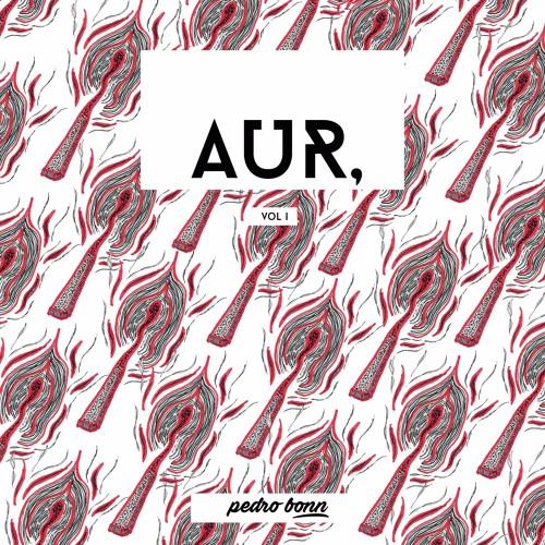 AUR, Vol 1. Pedro Bonn.