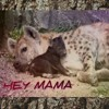 Download HEY MAMA ft B GReAzY x  HOLMIE Mp3