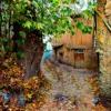 payiz - پاییز