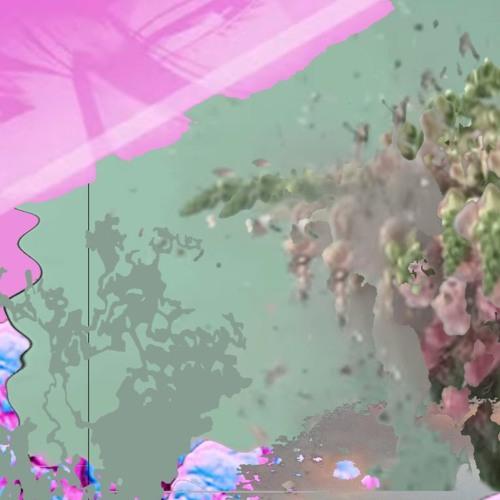Rosa Pistola 931