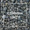 Common Unity – Part 2