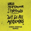 Idris Ackamoor & The Pyramids - We Be All Africans (Chris Deepak Mix)