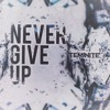 Download Teminite - Never Give Up Mp3