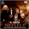 Dj Micks Ft Professor, Zinhle Ngidi, And Nelz - Sikelela