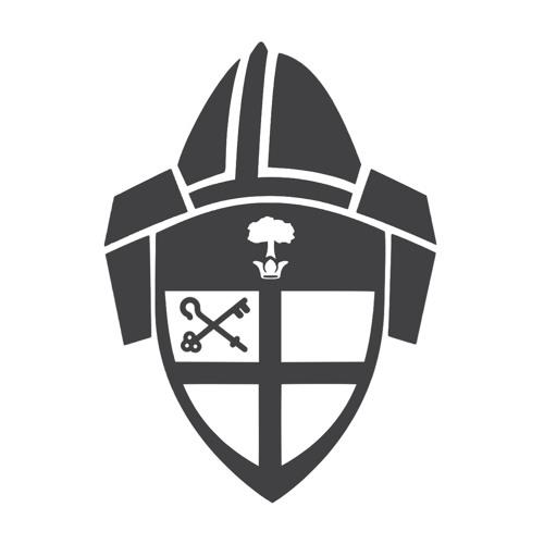 Bishop's Charge 2016