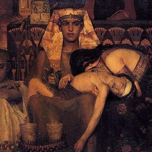 Pharaoh Of The Son