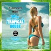 The Best Of Tropical House Mix (Dj-Khoolot Mix) (Preview)