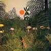 Nuphlo - Book of the Jungle clip (Studio Rockers)