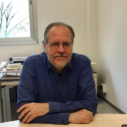 Entrevista a Ferran Gallego