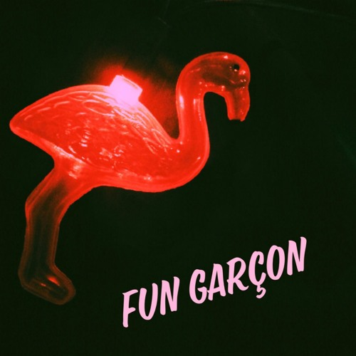 Fun Garçon