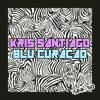 Kris Santiago + Blu Curacao - Sexy Buegel Bretter Mix 30 (Radio FG Chic Paris)
