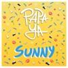 Free Download Sunny Mp3