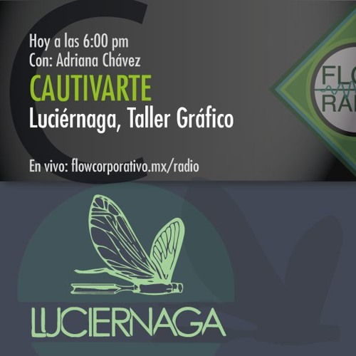 CautivArte 049 - Luciérnaga, Taller Gráfico