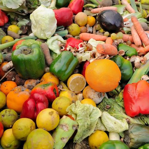 Programa Pérdida Y Desperdicio De Alimentos, Una Realidad A Superar Octubre 26 2016