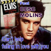 Can't Help Falling In Love with you mp3