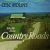Take Me Home Country Roads mp3