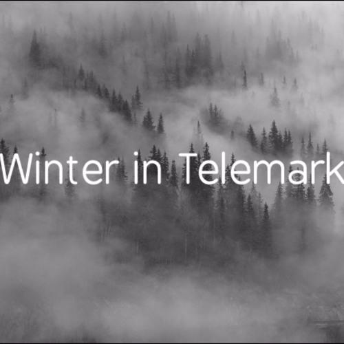 Winter In Telemark