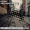 Cicada – Things you say (Alexey Talano & Namatria remix)