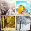 Autumn's Memory.mp3