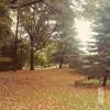 Autumn Is Leaving Here - پاییز از اینجا میگذرد