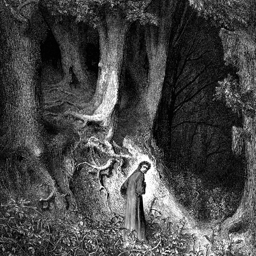 Within A Forest Dark