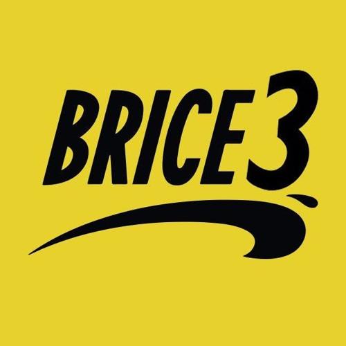 Dragon Ball Brice