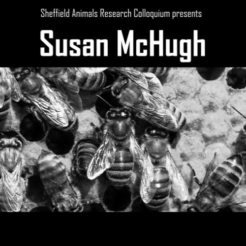 "ShARC Series: Susan McHugh ""Honeybee Fictions and Indigenous Frictions"""
