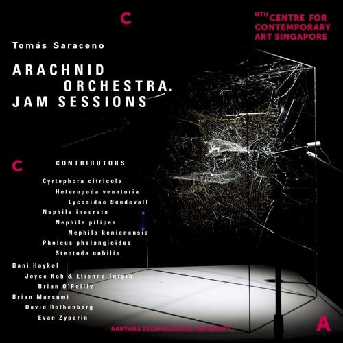 Arachnid Orchestra. Jam Sessions