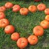 UCB News- Christians respond to Halloween Parties