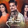 Sanam (OST) Hum Tv by Akhtar Waqar Tabish