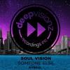 Soul Vision - Someone Else (C. Castel Remix)- deepvisionz - DVR13