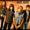 Wild World - Mr Big Cover
